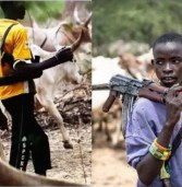 Climate change fuelling fatal Nigeria conflicts