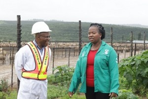 Vusi Rozani, Eastern Cape  Veterinarian (Left), and Nomakhosazana Meth, the provincial MEC of Rural Development and Agrarian Reform, at the Mawashi feedlot ahead of the export of sheep to the Middle East