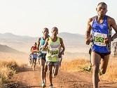 Global marathon goes virtual, defies COVID-19