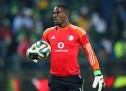 More twists in solving Meyiwa whodunit