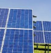 Solar orchard addresses SA fruit bowl's power woes